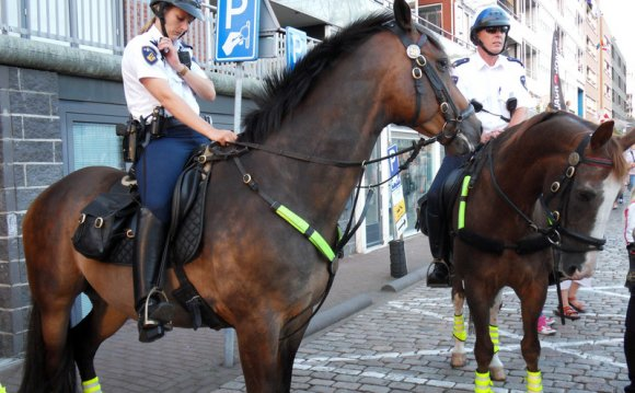 Mounted Police. (Summer )