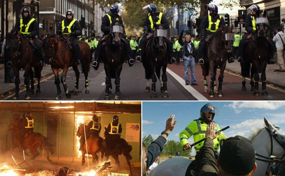 Mounted police horse units