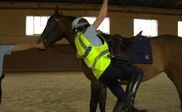 Rider Vest - Victoria Police