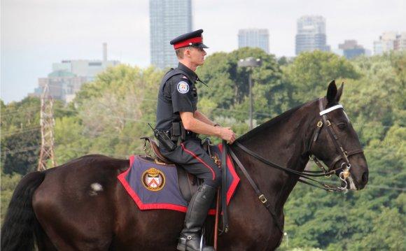 Toronto Police Mounted