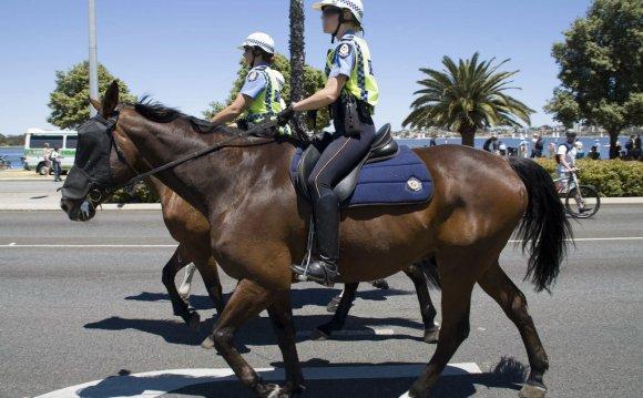 WA_Police_Mounted_Horses