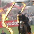 A horse with officer jumping through a ring of fire