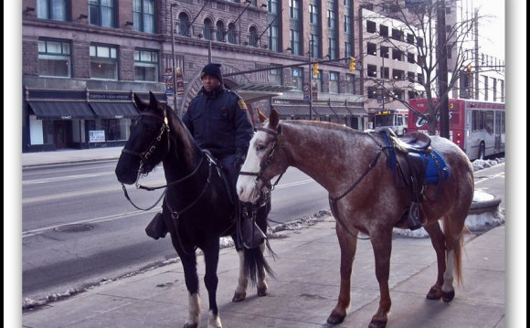 Cleveland Mounted Police