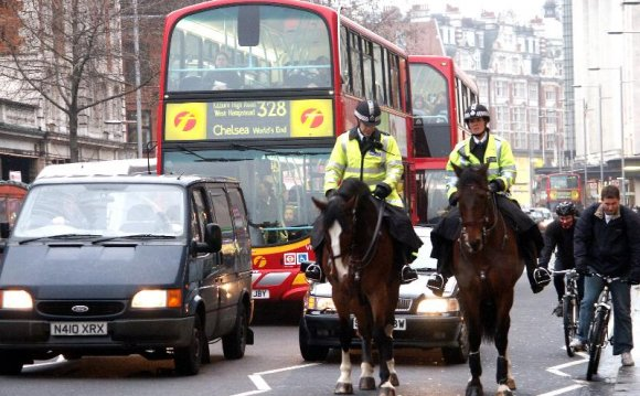 London Police horses