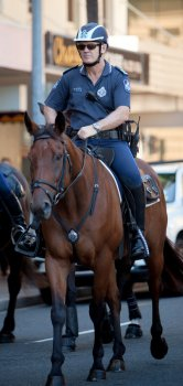 Senior Sergeant Mark Paroz, Officer in Charge Queensland Mounted Police Unit