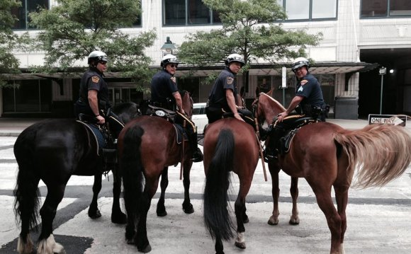 Mounted Police Salaries