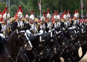 The Blues and Royals parade during the Queen's Official Birthday, also known as 'Trooping the Colour', Horse Guards Parade, June c2009