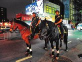 NYPD Mounted Police