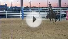 AQHA Mounted Shooting Horse for Sale: Playgirls Pepto