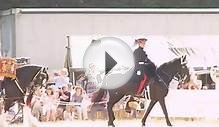Household Cavalry Mounted Regiment Musical Ride 2013