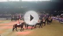 Musical Ride of the Household Cavalry - HOYS 2014 (part 2)