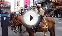 NYPD Mounted Police Unit & Horse Training Unit On 42nd