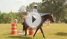 Oxford Mounted Patrol Training