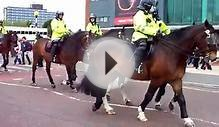 police horses at old trafford