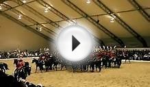 Royal Canadian Mounted Police Musical Ride 加皇家骑警