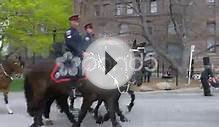 Toronto Police - Mounted Unit Stock Video 49833679 | HD