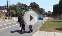 Western Australian Mounted Police on patrol.